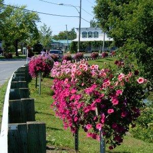 Quelques photos de la municipalité et sa nature