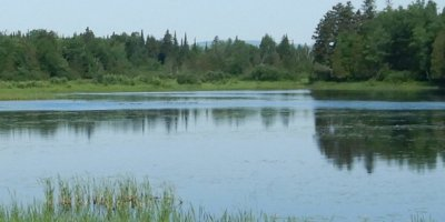 Priorisation des problématiques du Plan directeur de l'eau - Cogesaf