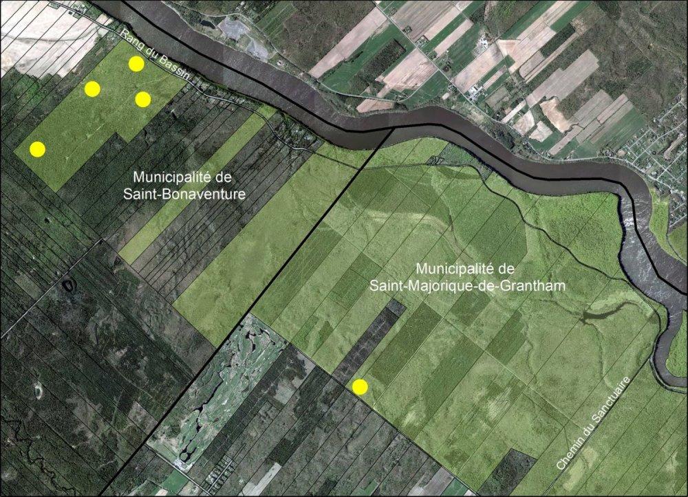 projet de recherche dans la Forêt Drummond
